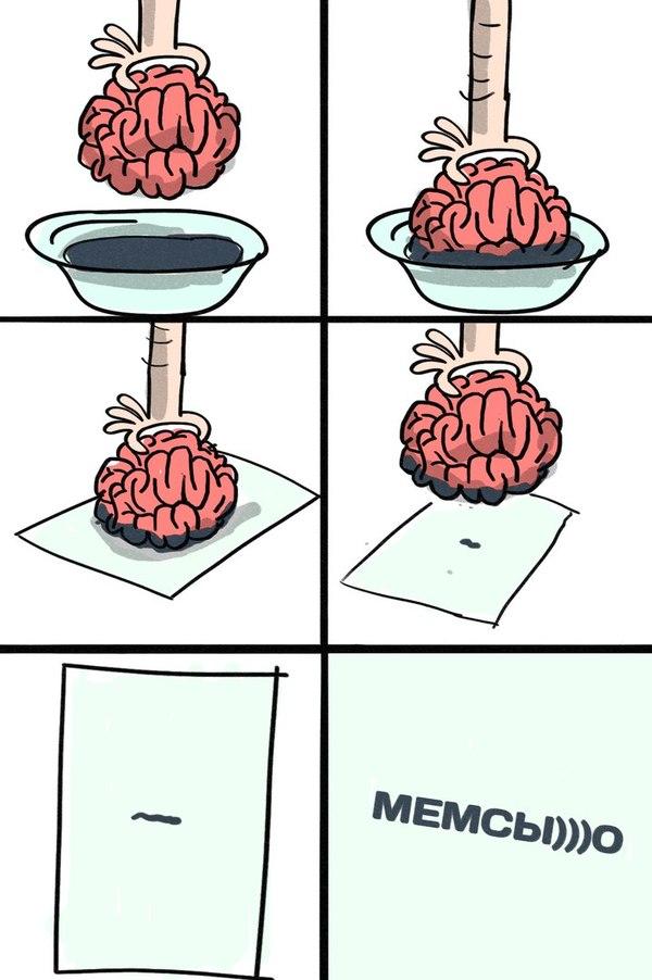 Ученые научились различать активность мозга по его отпечаткам Ученые, Мемы, Nplus1