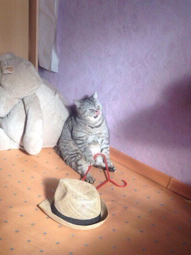 Жиро и вешалка Кот, Вешалка, Фото