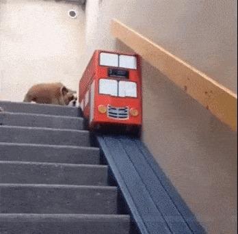 Лестница для крестьян настоящий джентльмен поедет на автобусе. )