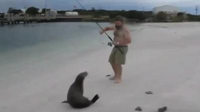 Мое море - моя рыба!