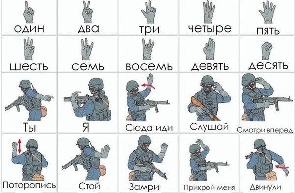 Язык сигналов-жестов спецназа. спецназ, жесты, Интересное, длиннопост