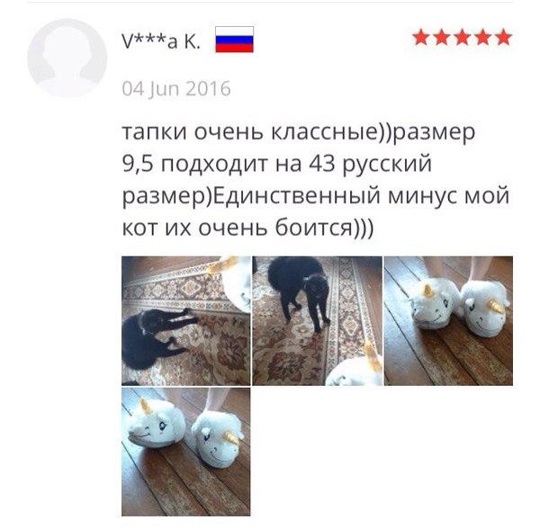 Тапки Тапки, Aliexpress, Картинки, Длиннопост, Кот