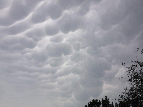Вымеобразные облака в Калуге Облака, Вымеобразные облака, Калуга