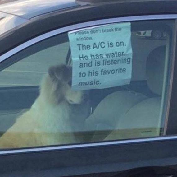 Надпись: не разбивайте окно! кондер включен, у него есть вода и он слушает любимую музыку