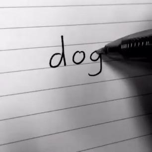 Рисование собаки для начинающих