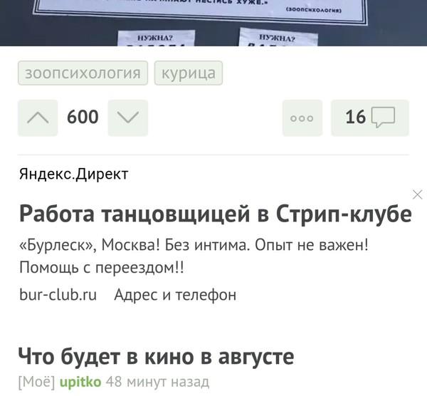 Яндекс в помощь! Задержка зарплаты, Яндекс директ