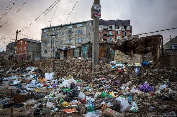 Махачкала – мусорная столица России моё, Махачкала, Мусор, Россия, Грязь, Репортаж, Интересное, фотография, длиннопост