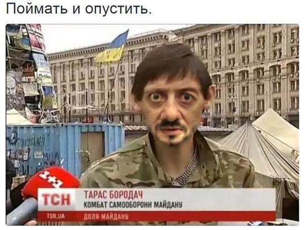 http://cs4.pikabu.ru/post_img/2016/08/05/7/1470396120159037512.jpg