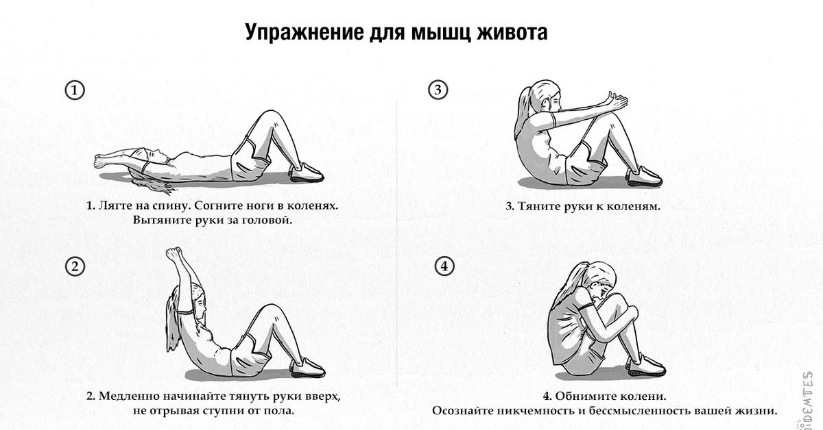 комплекс упражнений с картинками для мышц живота различают