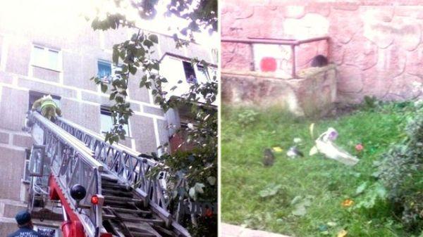 Двухлетний мальчик выкинул из окна кота, утюг и чайник в Калининграде Текст, Кот, Рен ТВ, Засранец