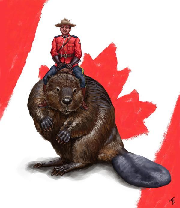"""Ответ  на  вопросы  к  посту  """"Очень  канадское  фото."""" Картинки, Канада, Стереотипы"""