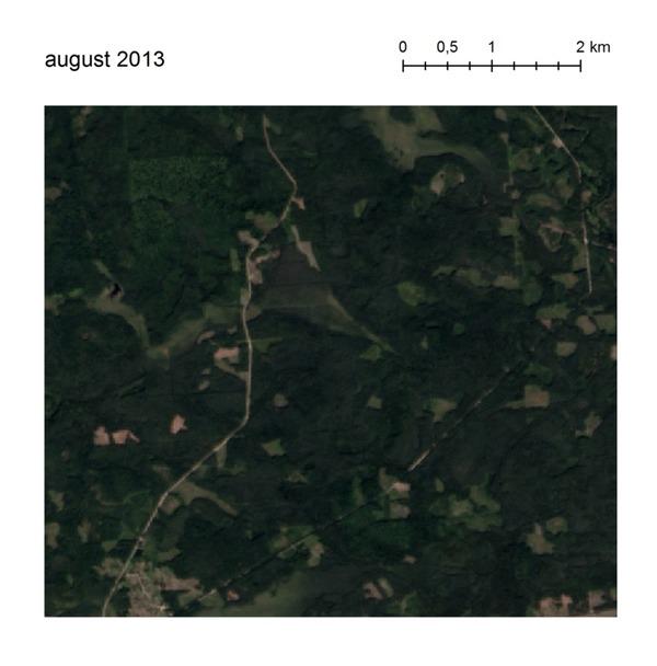 Как  за три года разрасталась незаконная добыча янтаря и попутно уничтожила больше 200 гектаров леса Landsat-8, Sentinel-2a, Снимки из космоса, Янтарь, Экологическая катастрофа, Гифка, Украина