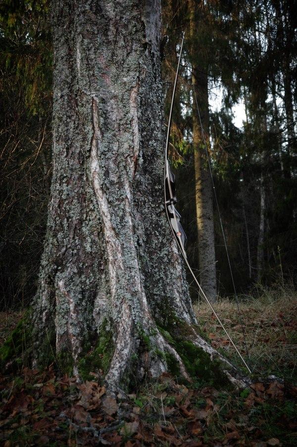 Подборка луков от Джона Нимена (John Neeman) Оружие, Лук, Длиннопост