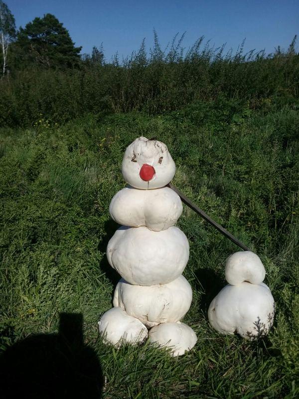 Сибирский снеговик-грибовик