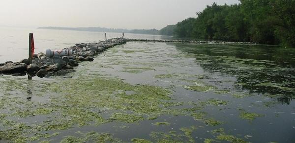 Самые загадочные и опасные озера планеты Озера загадка, Природа, Тайны, Длиннопост, Видео