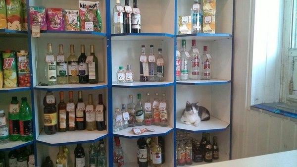Бутылку столичной и котейку
