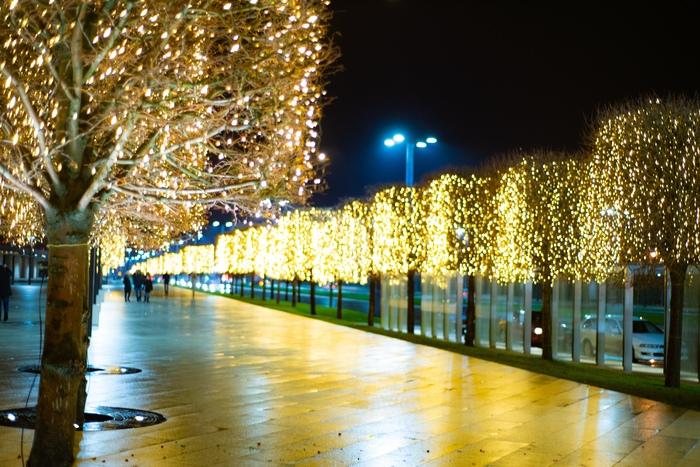 """Новогодний парк """"Краснодар"""" Краснодар, Парк, Город, Новый Год, Иллюминация, Украшение, Ночь, Фотография, Длиннопост"""