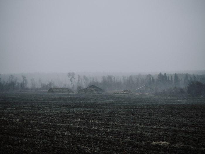 Атмосферы пост Начинающий фотограф, Атмосфера, Природа, Пейзаж, Поезд, Поле, Длиннопост