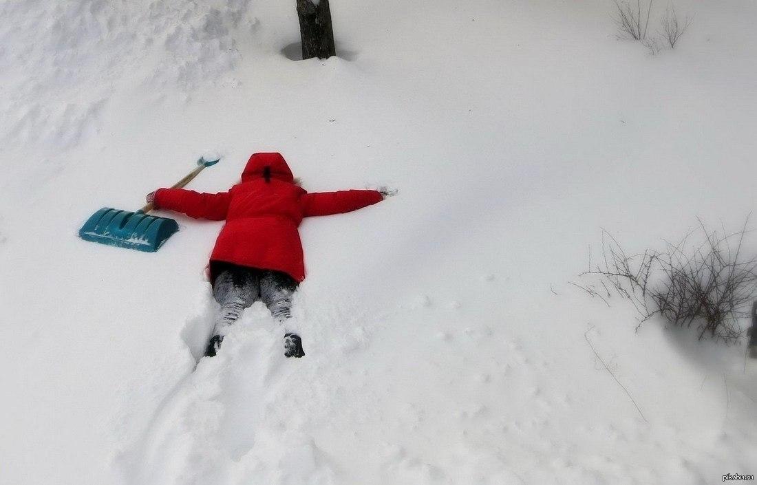 Прикольные картинки замело снегом