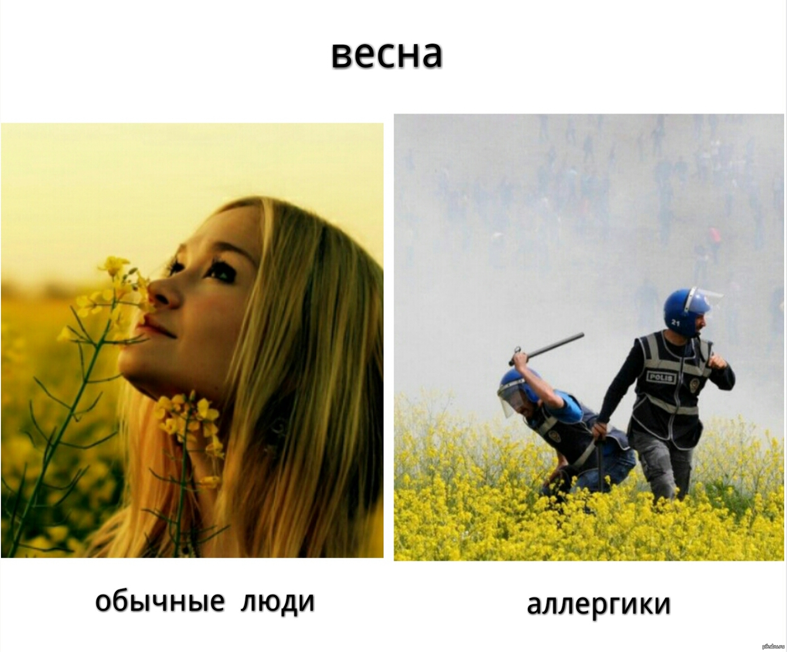 Аллергия смешные картинки, червяки поздравительная открытка