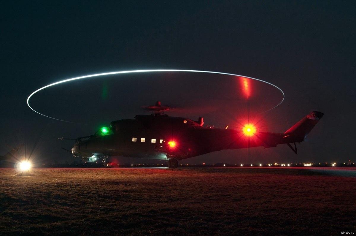 цветы-многолетники больше вертолет ночью фото были заинтересованы миром