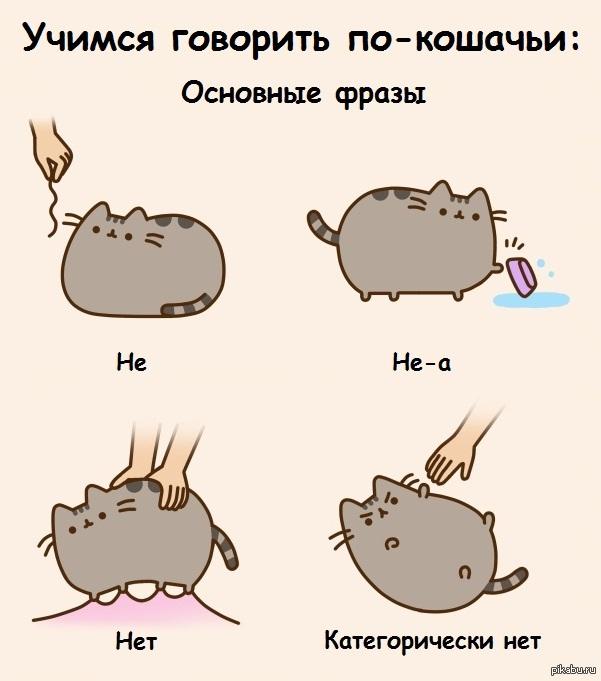 я говорю по кошачьи картинка нравятся работы