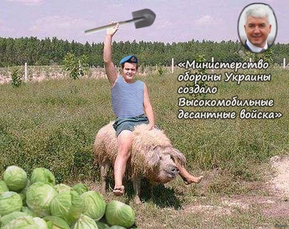 Открытка, украина картинки с надписями прикольные