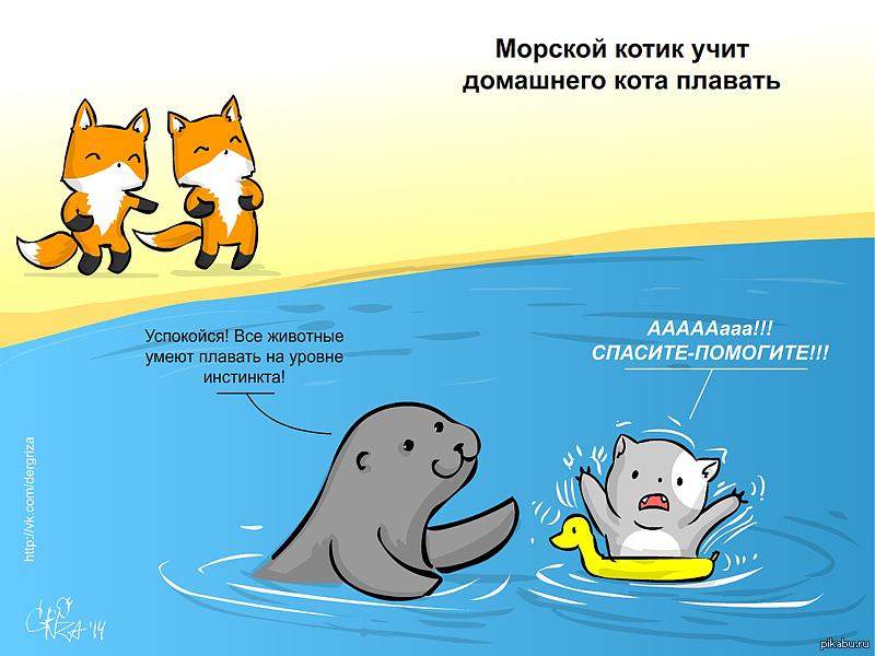 Смешные рисунки плавание, открытка
