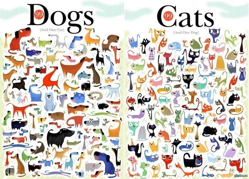 сколько котят на картинке ответ одного