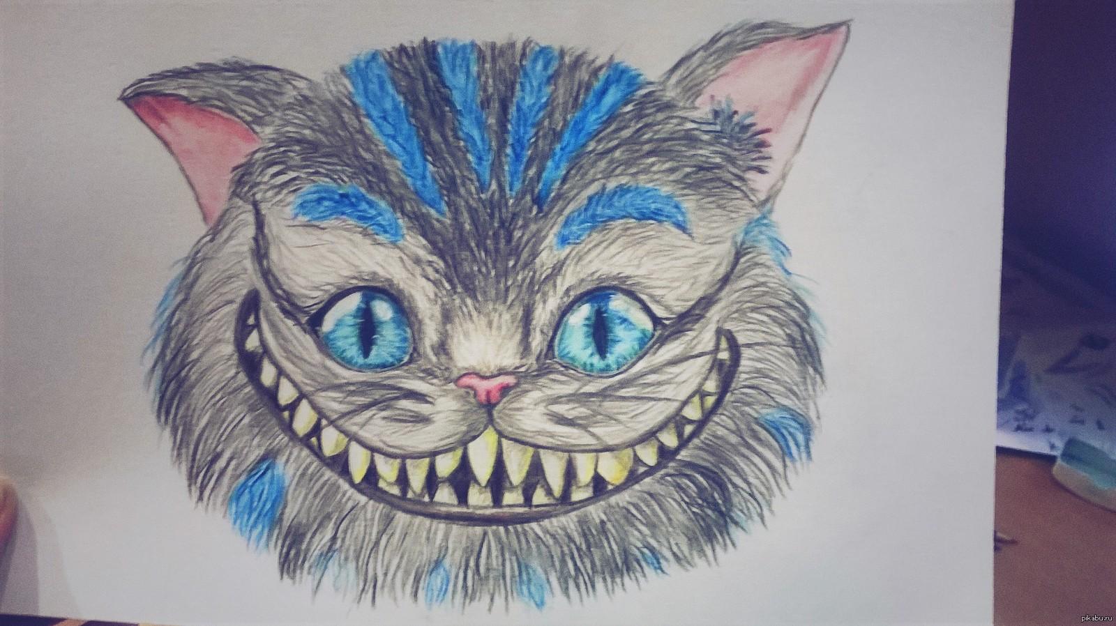 регионы рисунки чеширский кот простым сожалению, говяжья