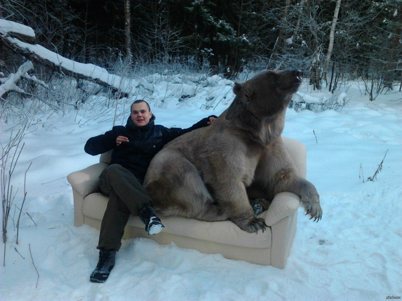 Как, новые русские прикольные картинки