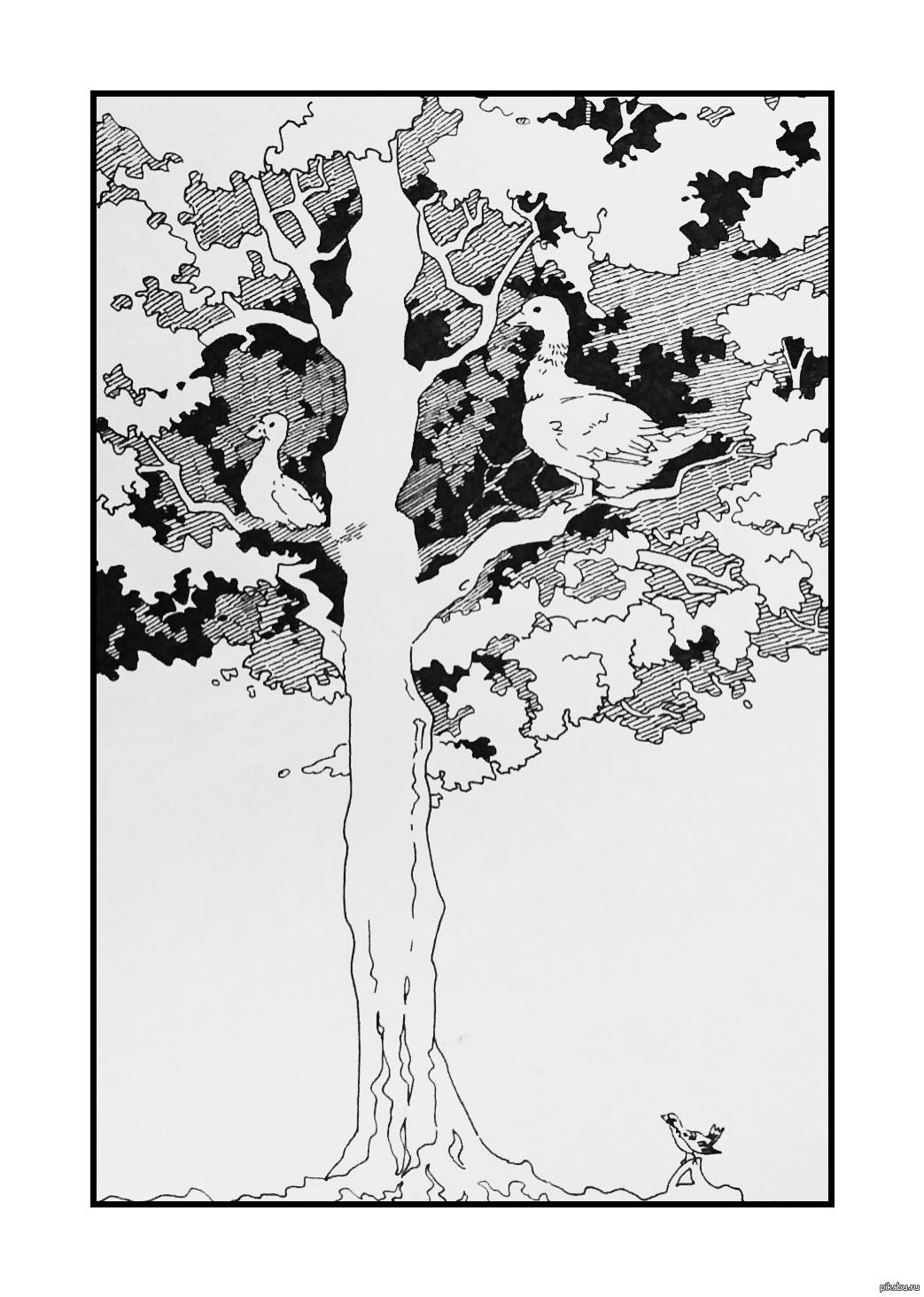 Duck on top of a tree Утка на верхушке дерева | 1463x1043