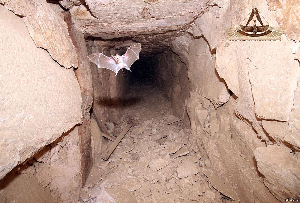 что находится в египетской пирамиде картинки кадре артист пижонской