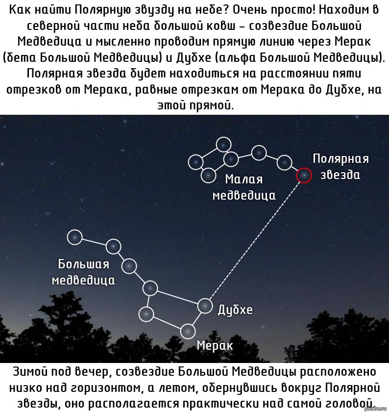это время полярная звезда как найти на небе фото июнь