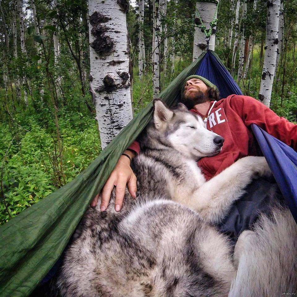 Немка в лесу с другом