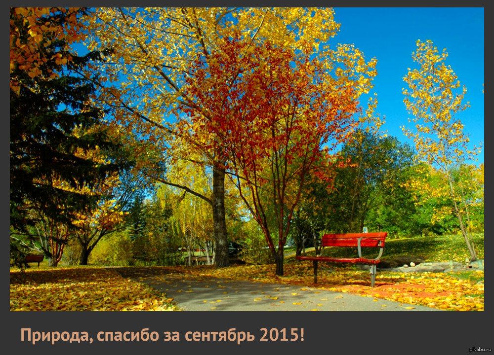природа картинки сентябрь