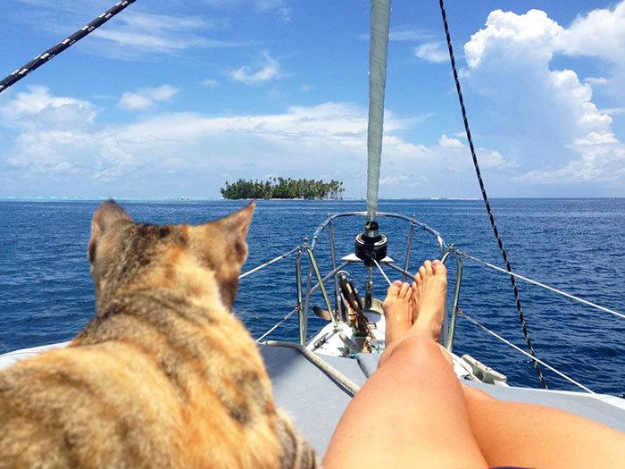 Девушку фото женщин на яхте где заклеивают рот