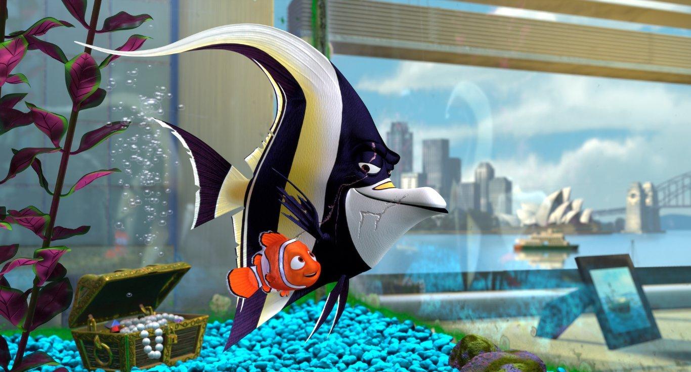 Какие рыбы в мультфильме в поисках немо сериалы про школу и любовь