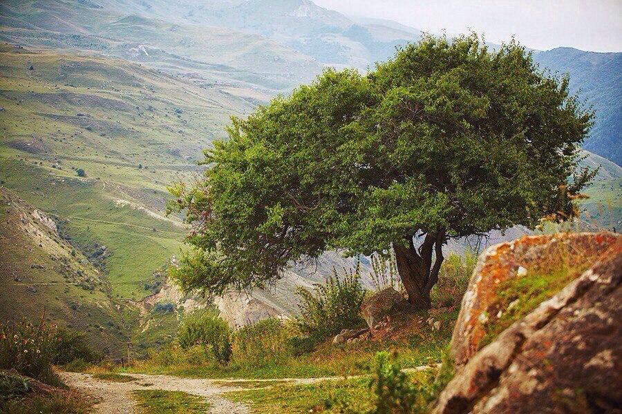 северная осетия-алания фото