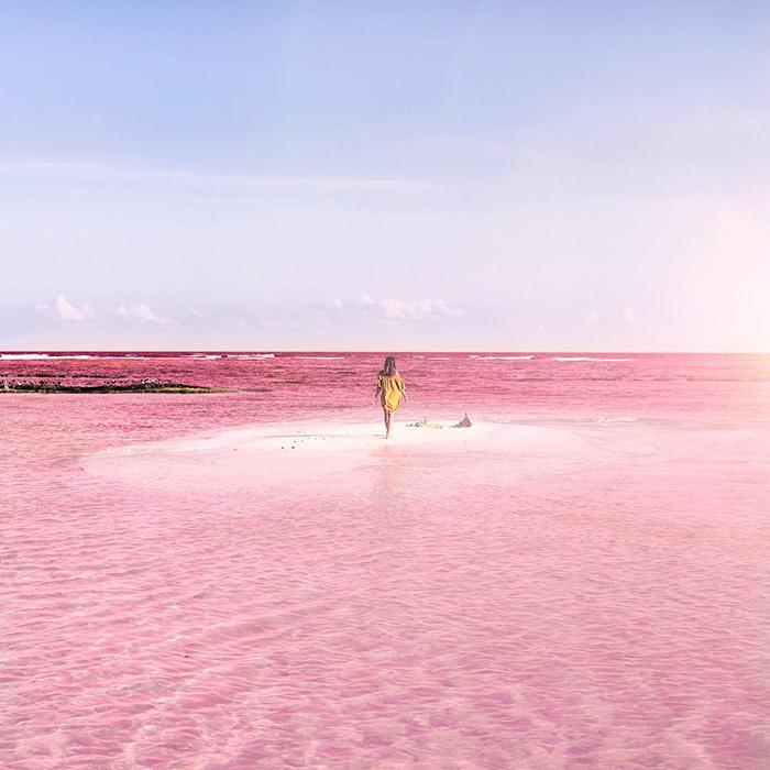 Розовая лагуна с переводом фото 367-312