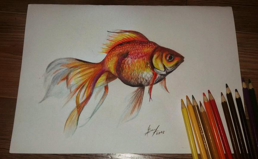 рисунки карандашами фото